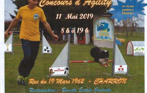Concours agility 11.05.2019